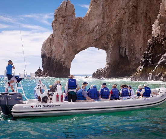 whale watch hilton los cabos